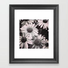 Sunlight Fading Framed Art Print