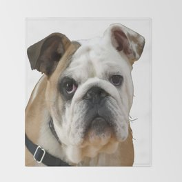 American Bulldog Background Removed Throw Blanket