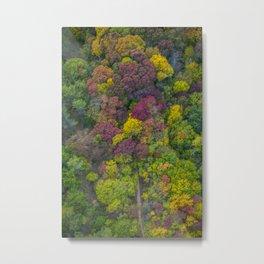 L'automne 01 Metal Print