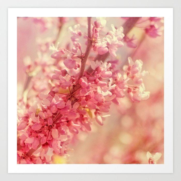 One Spring Day... Art Print