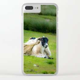 Wind sheared Sheep Clear iPhone Case