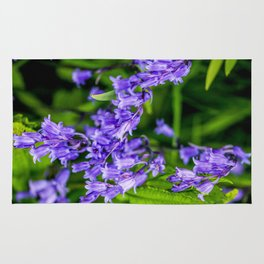 Mylor Walk - Bluebells Cluster Rug
