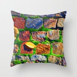 Brick It Throw Pillow
