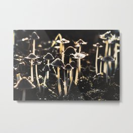 Wild Mushroom's Forest Metal Print