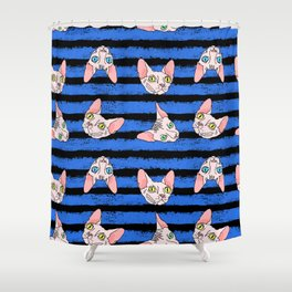 sphynx cats on blue and black Shower Curtain