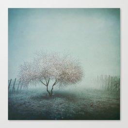 Blurred Hope Canvas Print