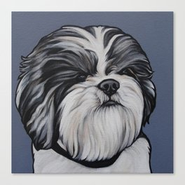 Products for Herbie the Shih Tzu Canvas Print