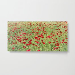 A Pasture Of Red Poppies and Remembrance Metal Print