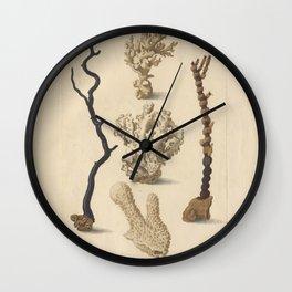 Naturalist Coral Wall Clock
