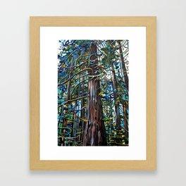 Tofino Rain Forest Painting Framed Art Print