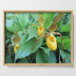Lady Slipper Serving Tray