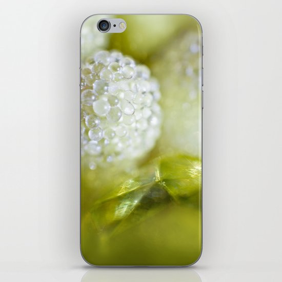 SERIES »MICROPEARLS« III iPhone & iPod Skin