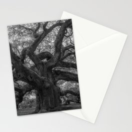 1,500 Year Old Angel Oak Tree of Charleston, South Carolina black and white photography / photograph Stationery Cards