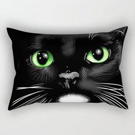 Porkchop the Cat  Rectangular Pillow