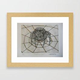 Salticidae Framed Art Print