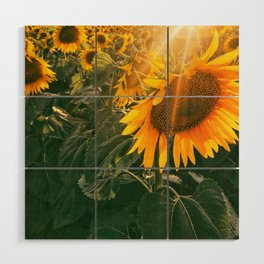 summer in the fields Wood Wall Art