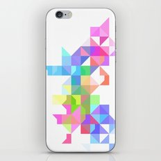 Color Love iPhone & iPod Skin