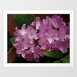 Azalea Flowers PhotoArt Art Print