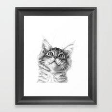 Kitten looking up G115 Framed Art Print