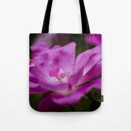 Fuchsia rose Tote Bag