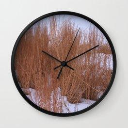 Winter Grasses Wall Clock