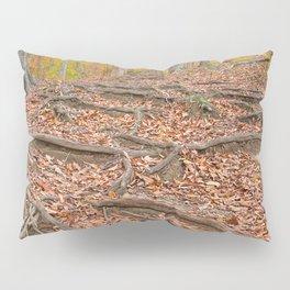 Autumn Avalon Forest Trail Pillow Sham