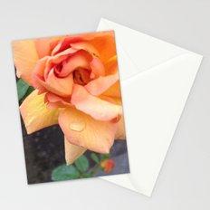 Orange Rose Stationery Cards