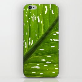 Spotted with White: Leaf iPhone Skin