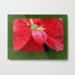 Mottled Red Poinsettia 2 Blank P1F0 Metal Print