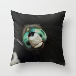 Cool Dragonfly Close-up Blue Darner Throw Pillow
