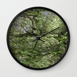 The spring wall Wall Clock