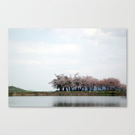 Spring Pond Canvas Print