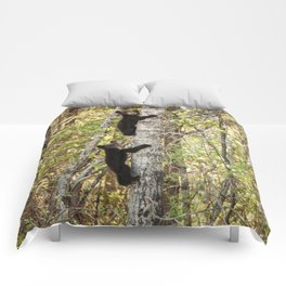 Baby Bears in a Tree Photography Print Comforters