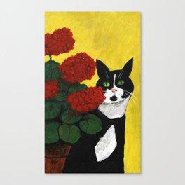 Cat Amongst The Geraniums 2 Canvas Print
