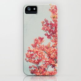 Cheerful Spring iPhone Case
