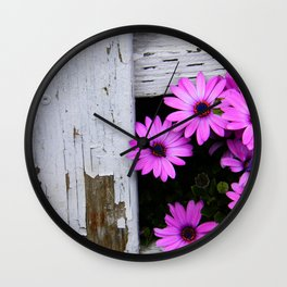 daisies through the fence Wall Clock