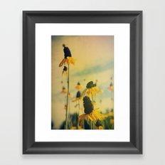 Summer Sunshine Framed Art Print