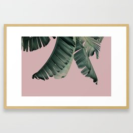 Banana Leaf Blush Framed Art Print