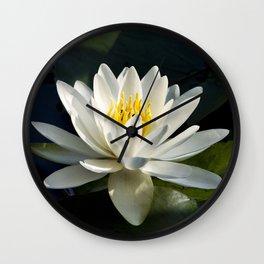 Waterlily Wall Clock