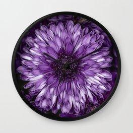 Purple Mums Wall Clock