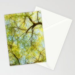 Willow Canopy Stationery Cards