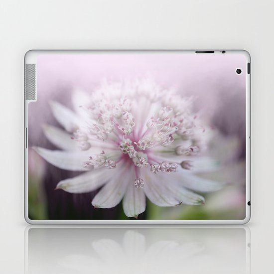 Umble-star Laptop & iPad Skin