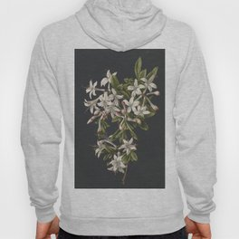 M. de Gijselaar - Branch of blooming azalea (1831) Hoody
