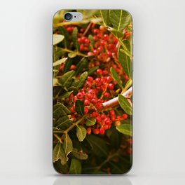 Be very berry iPhone Skin