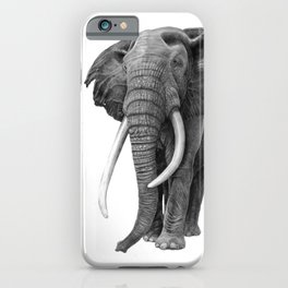 Bull elephant - Drawing in pencil iPhone Case