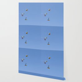 Blue macaws flying under blue sky Wallpaper
