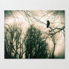 Crow Blur Canvas Print