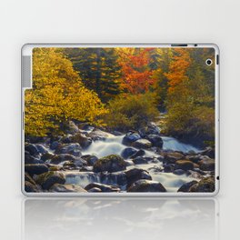 Autumn River II Laptop & iPad Skin