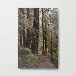 Vintage Hiking Trail Metal Print