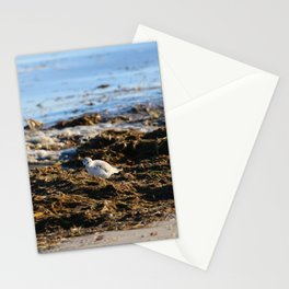At the beach 8 Stationery Cards
